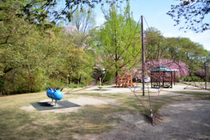 植物園 アスレチック