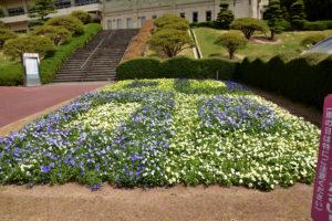 植物園 花壇