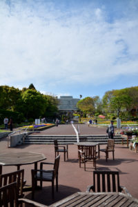 植物園 大温室 道筋