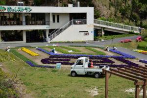 植物園 花の迷路