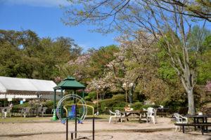 植物園 広場 遊具