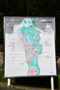 植物園 案内図