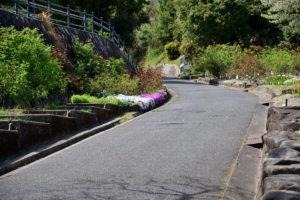 植物園 バラ園 坂道