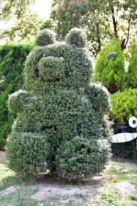 植物園 クマ トピアリー