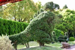 植物園 恐竜 トピアリー