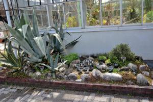 植物園 サボテン 温室 入り口