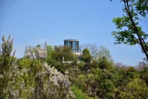 植物園 展望台 遠景