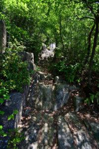日浦山 登山 岩場
