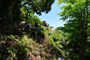 日浦山 山頂目前